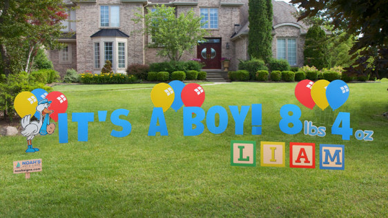 its a boy letters in blue 9 assorted balloons standup its a boy stork weight of your newborn baby boy your babys name in toy blocks